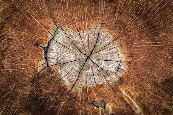wood-1288846_1920